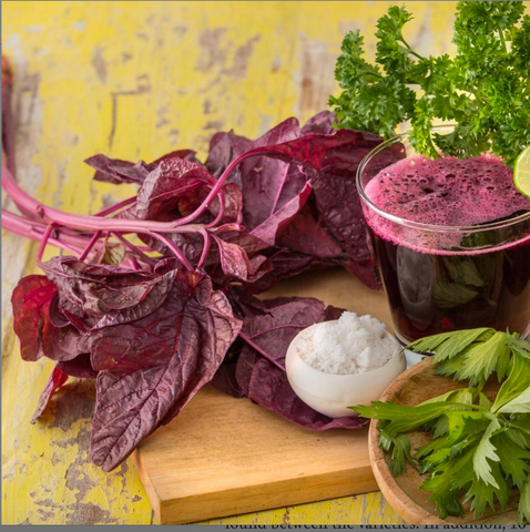 Top Nitric Oxide Foods, Ranked | Red Spinach | Spin Boost | NutriGardens