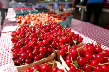 What are the best varieties of cherries for runners? | NutriGardens