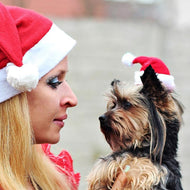 Winter Warm Christmas Pet Santa Claus Hat