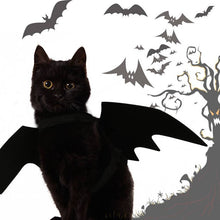 Load image into Gallery viewer, Halloween Cat Costume Small Pet Cat Bat Wings - trendybyjoey,.com