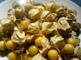 Ground Cherry - seeds
