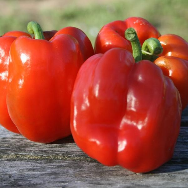 Peppers, Sweet: Quadrato d'Asti Rosso - seeds