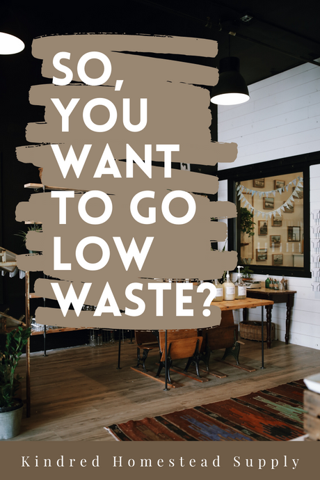 So, You Wanna Go Low Waste? Here's One Way to Get Started!