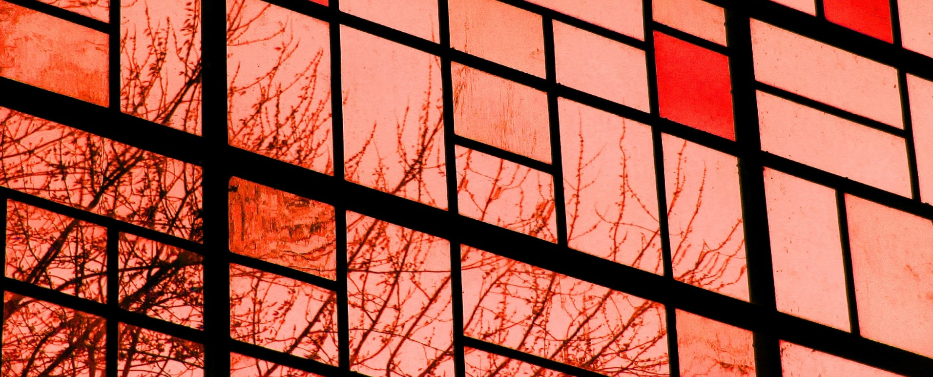 Pink and Red Stained Glass with Silhouette of a Tree.