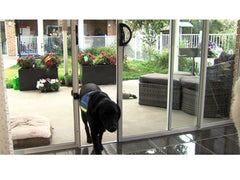 Automatic Pet Door