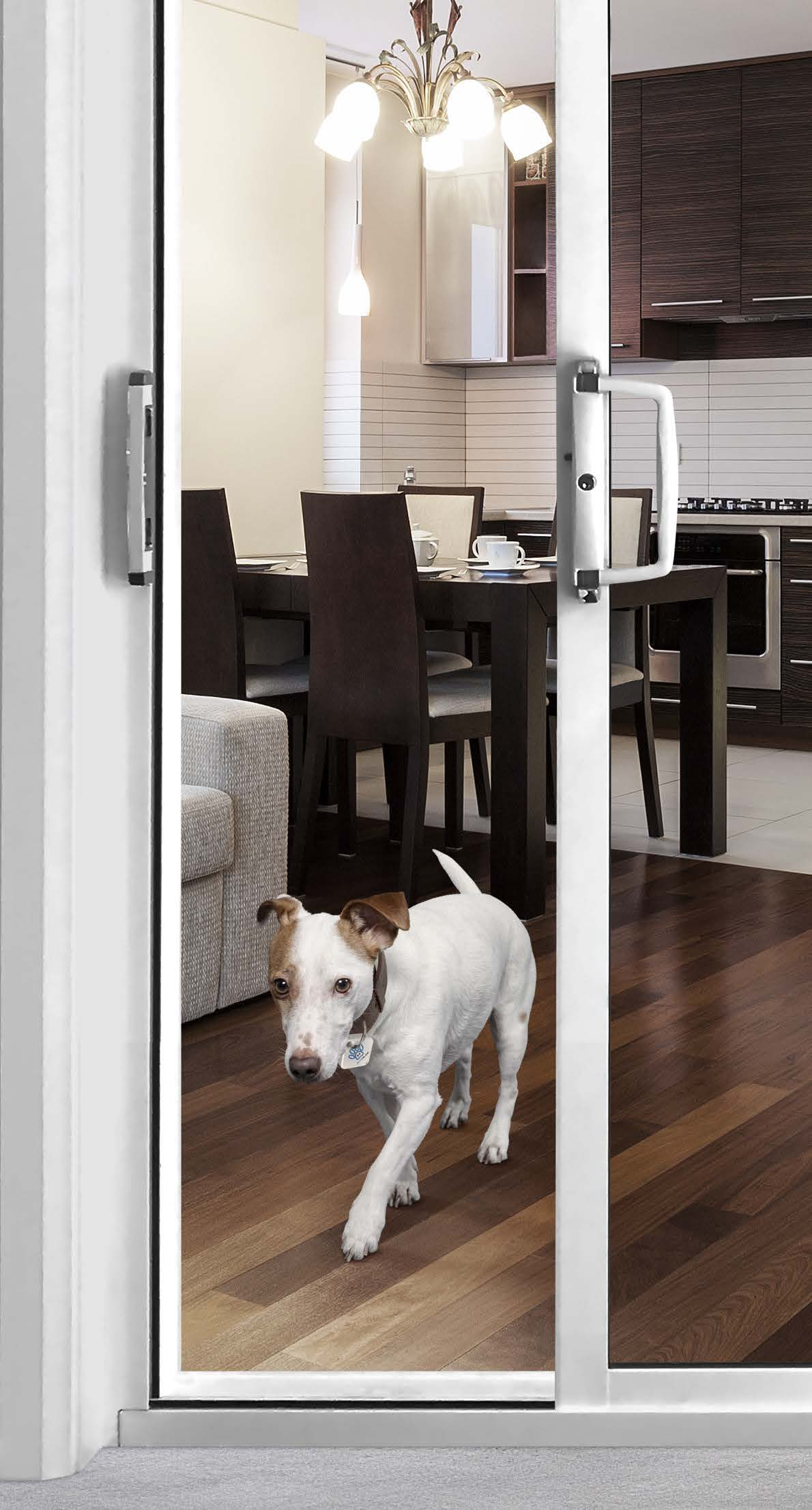 K9 Smart Tag for Autoslide RFID Pet Door