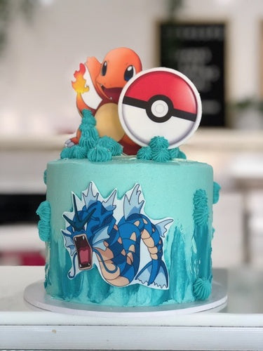 "6"" POKEMON 2D"