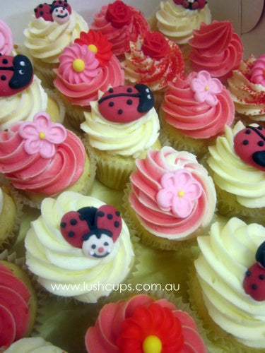 24 mini red beetle cupcakes