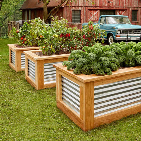Metal raised bed garden