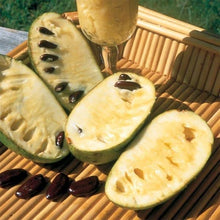 Load image into Gallery viewer, pawpaw fruit