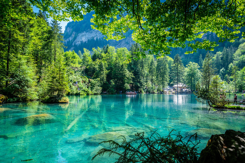 The Blausee, Blausee