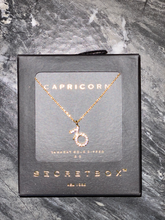 Load image into Gallery viewer, CZ Zodiac Necklace
