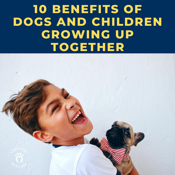 10 Benefits of Dogs and Children Growing Up Together