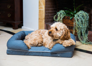 Small Imperial Dog Bed - Grey (No Print)