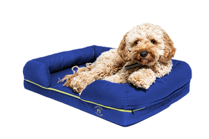 Small Imperial Dog Bed - Blue (No Print)