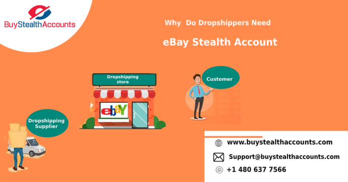 Why Do Dropshippers Need eBay Stealth Account