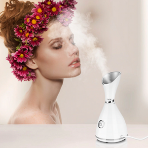 3-in-1 Nano Ionic Professional Facial Steamer