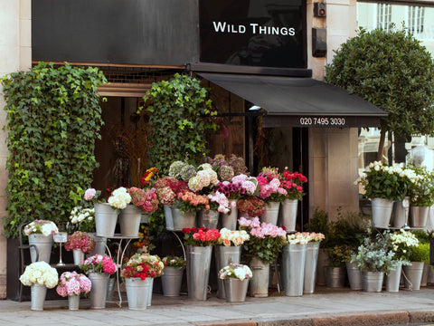 Wild Things Flowers Shop