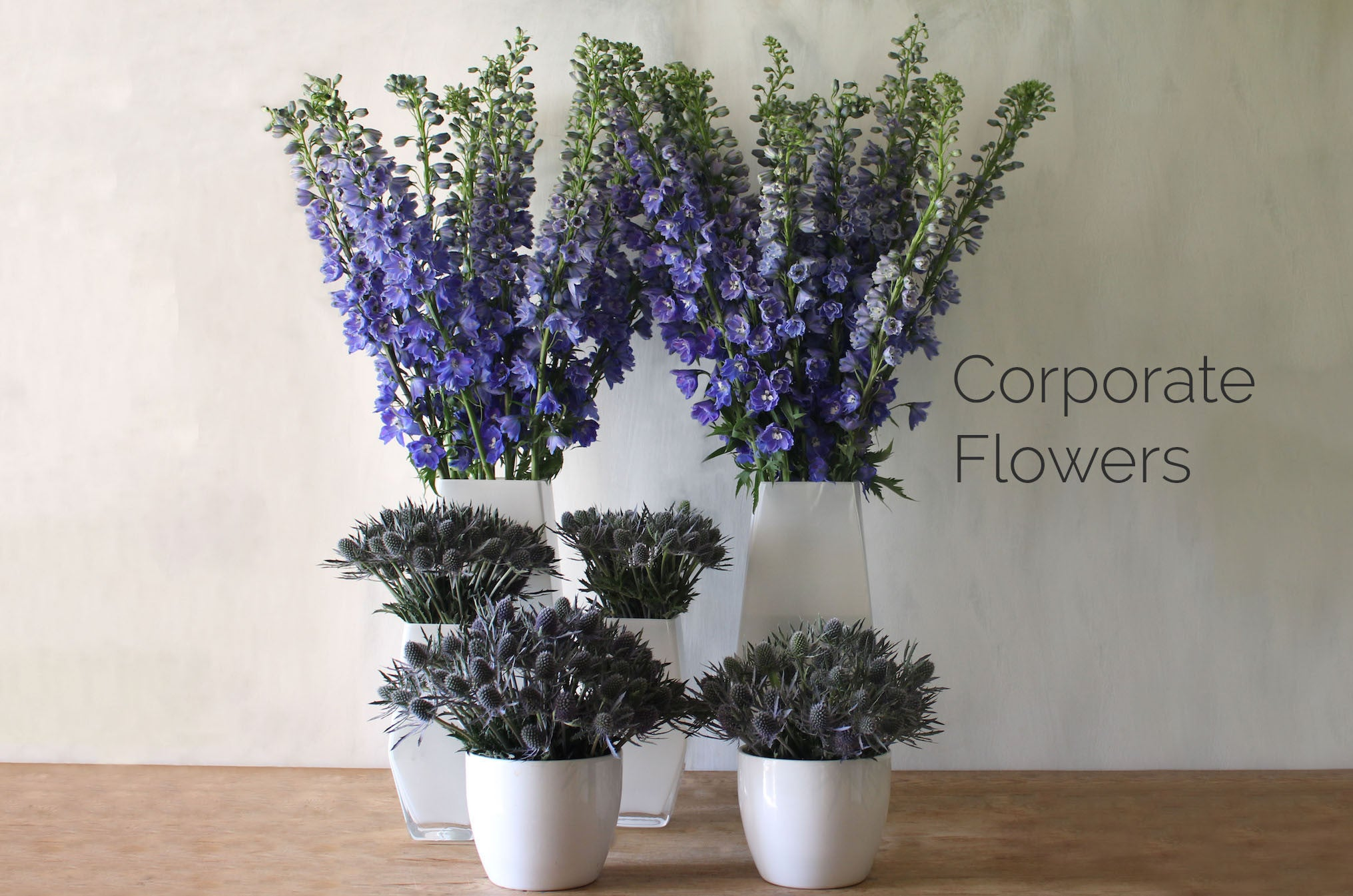 Wild Things Flowers Corporate Flowers