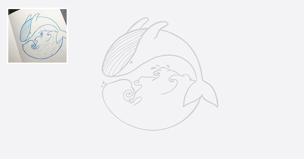whale sketch illustrator