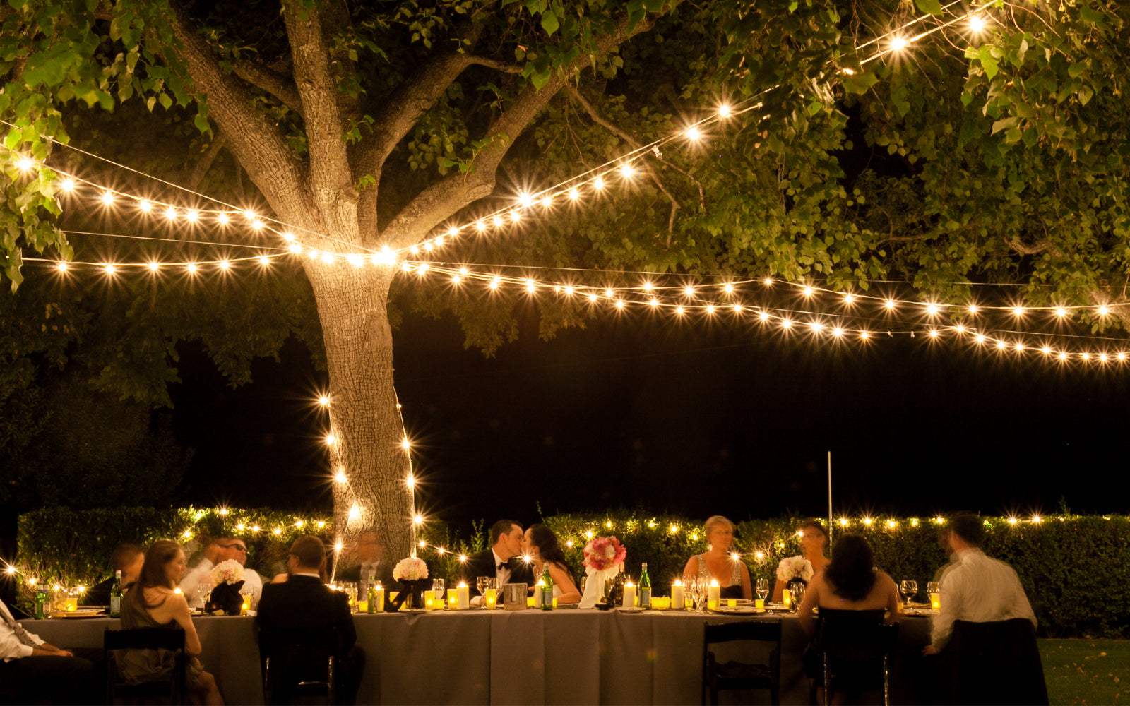 Outdoor Wedding Reception with String Lights Overhead