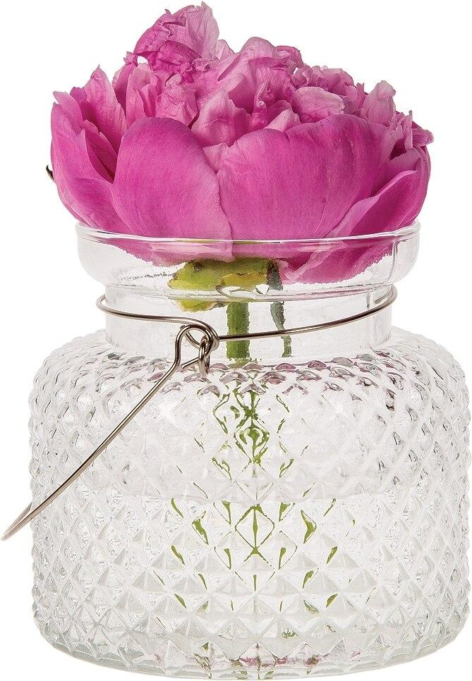 Marion Clear Hanging Mason Jar Candle Holder and Vase (20 PACK) - AsianImportStore.com - B2B Wholesale Lighting and Décor