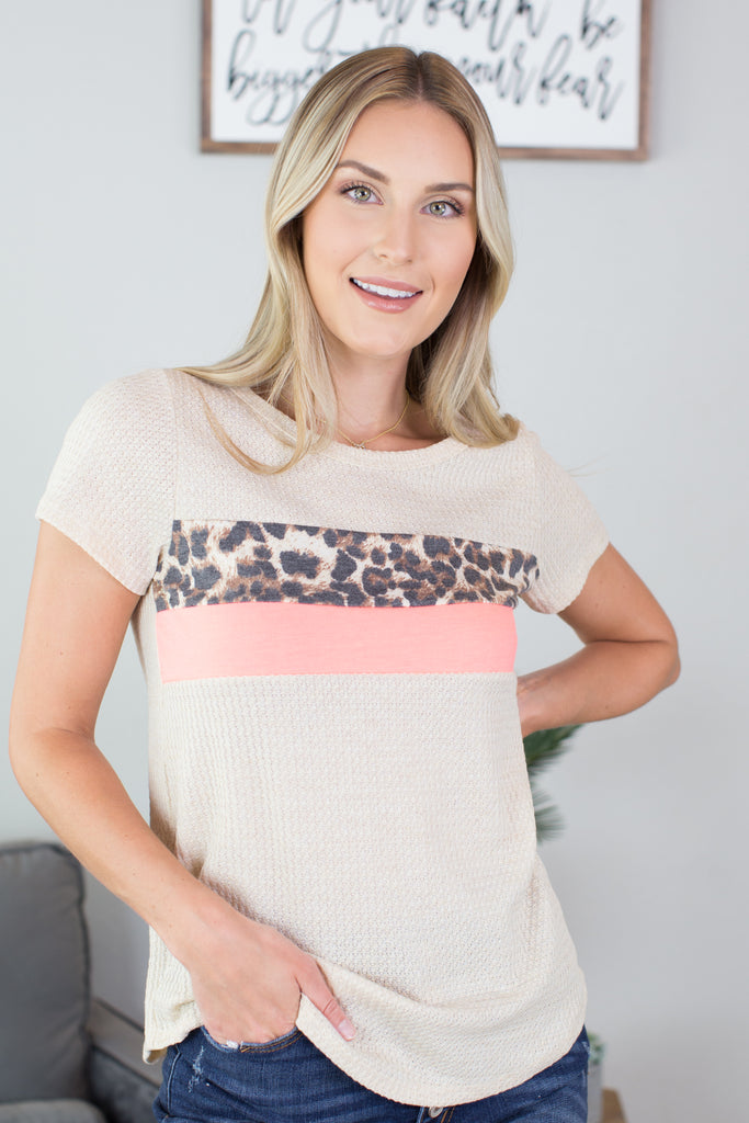 Animal Attack Colorblock Top