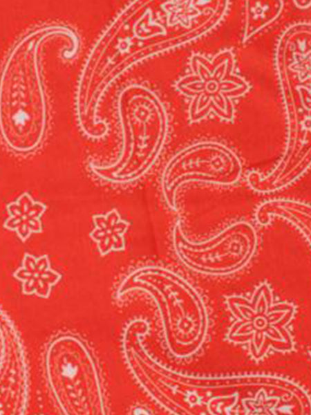 Red Paisley 12in1 Multi-functional Head wear