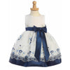 Embroidered Organza Navy and White Dress Baby and Toddler Girl