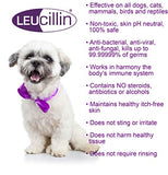 Leucillin Non Toxic Anticeptic Animal Skin Spray 500ml