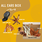 All Ears Box