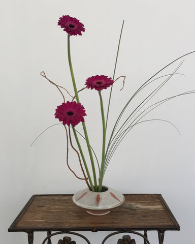 Gerbera and Grass Bowl