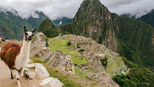 Load image into Gallery viewer, Machu Picchu Virtual live Tour