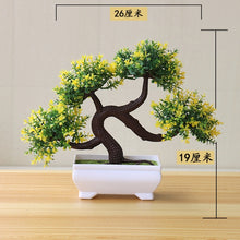 Load image into Gallery viewer, Bonsai Trees - Chancery Lane
