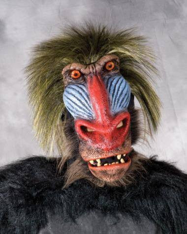 Costume - Baboon Mask