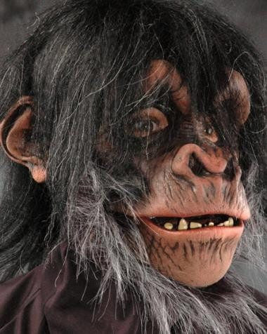 Costume - Super Action Chimp Mask