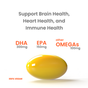 Function Four | Vegan Omega-3