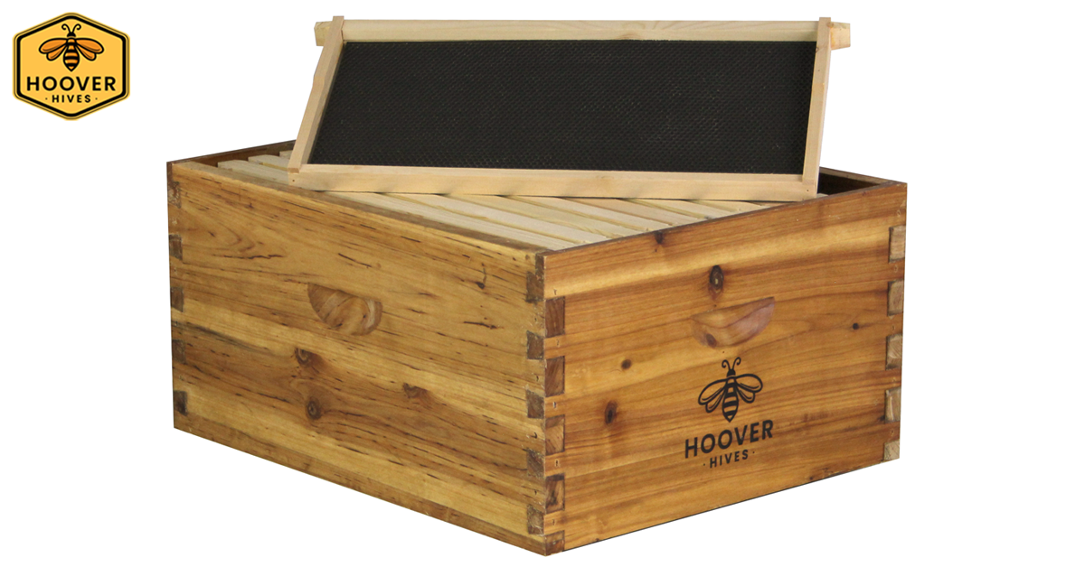 Angled View Of A Wax Coated Wooden Hoover Hives Deep Brood Box With A Deep Frame And Black Foundation Propped Up On The Box