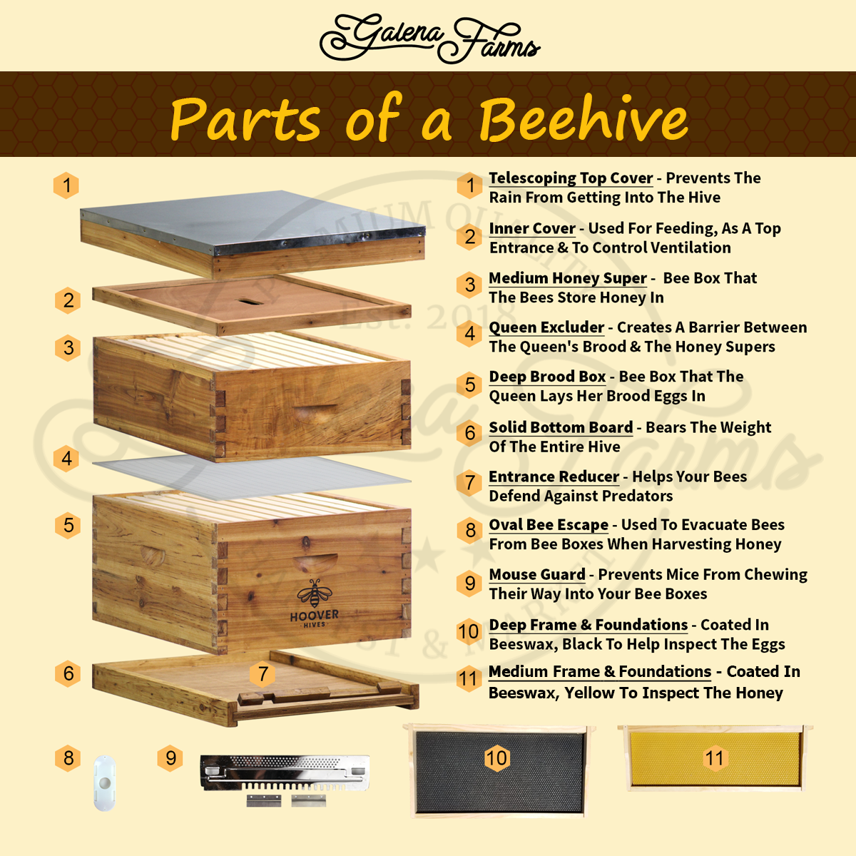 Diagram of all the pieces and parts of a beehive that come with a Hoover Hives 1 Deep 1 Medium Hive Kit