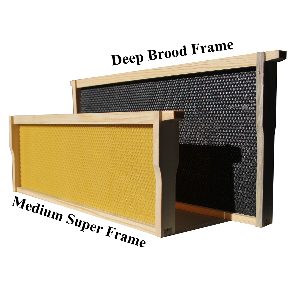 Medium Frame With Yellow Foundation Standing Next To A Deep Frame With Black Foundation. The Two Are Different Sizes