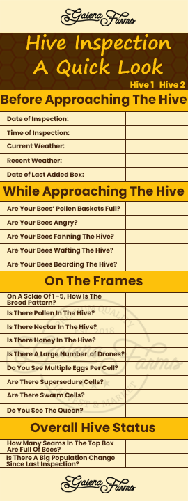 List of all the items that you'll look for when you're doing a basic hive inspection. Great for first year beekeepeing.