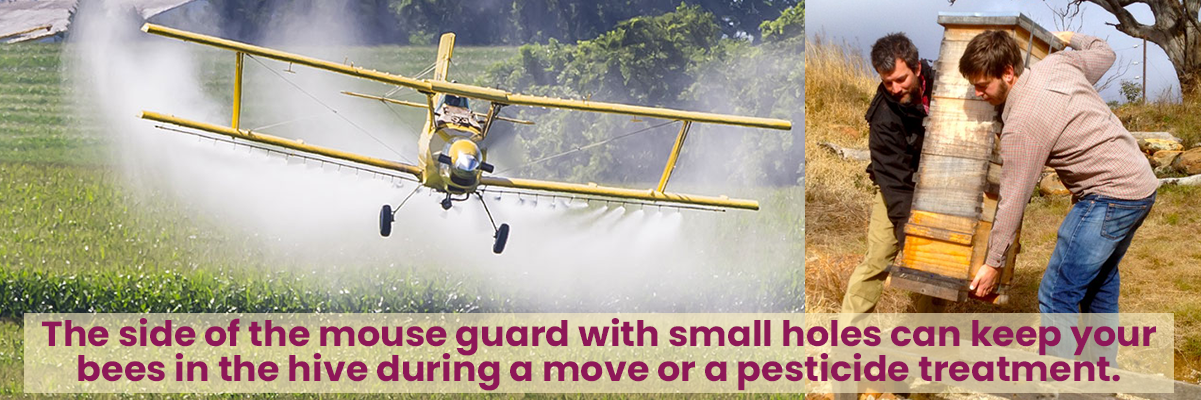 Left side shows an airplane crop dusting a field, right side shows two men moving a beehive to a hive stand in a field.