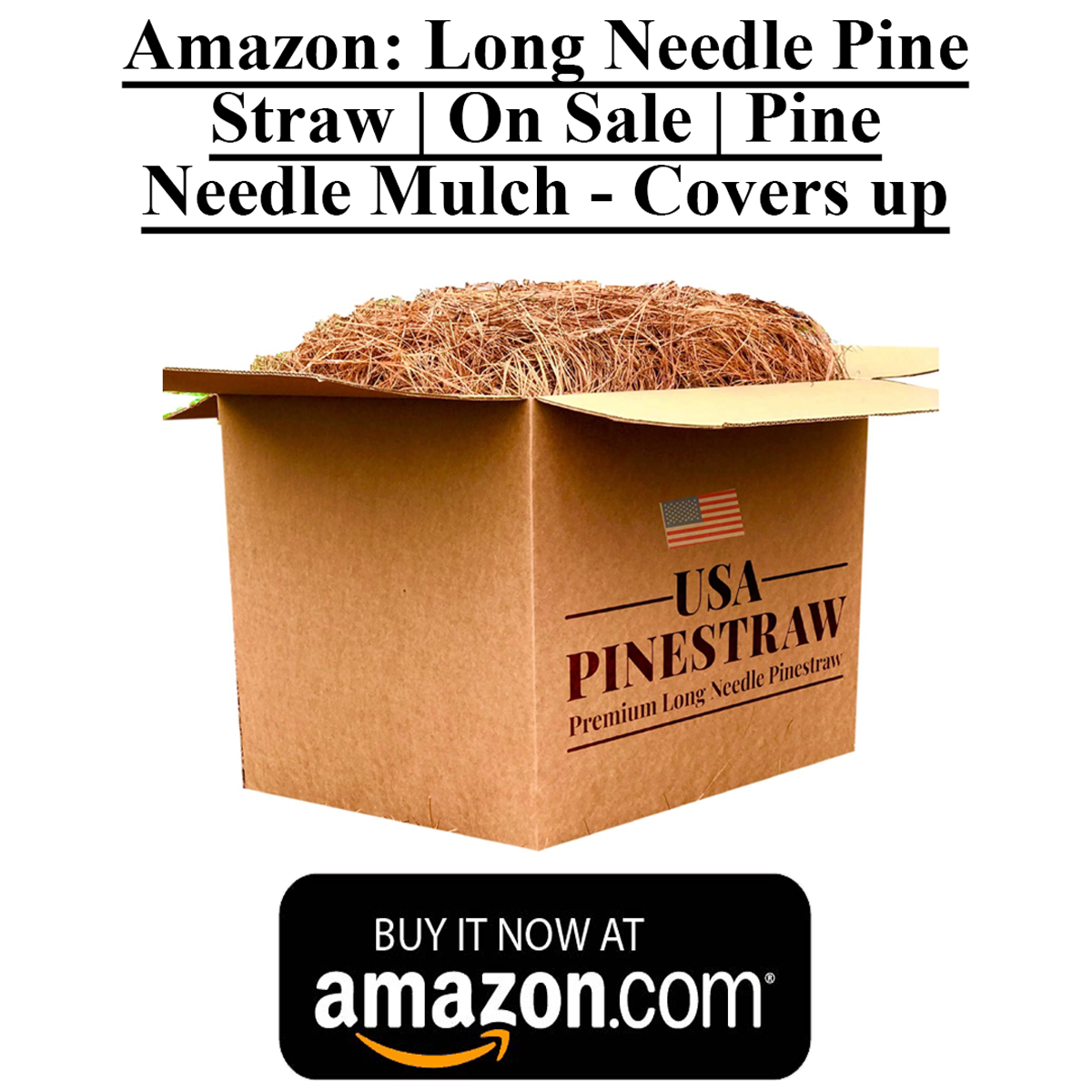Box Of Long Pine Needles That You Can Purchase On Amazon. Pine Needles Are Ideal For Beekeeping Smokers. Made In The USA
