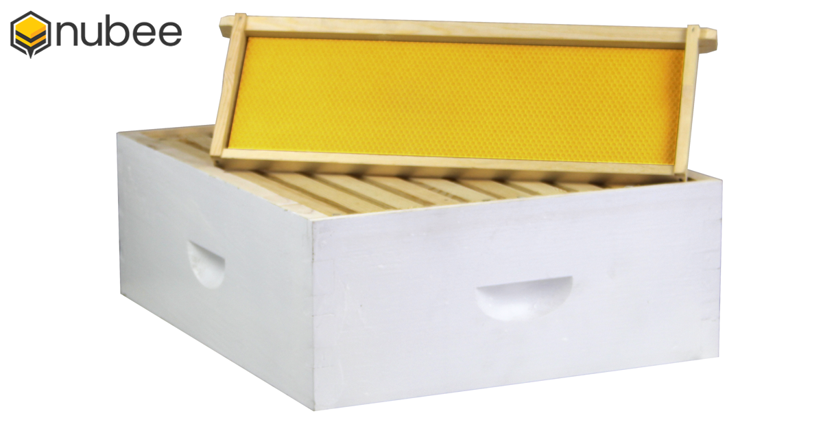 Angled View of NuBee Wooden Medium Super Box Painted White With A Medium Frame And Yellow Foundation Propped Up On The Box