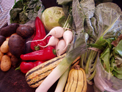 Jenehr Farms CSA