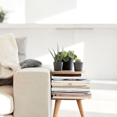 EcoPots-couch-sofa-side-table-magazines-indoor-plants