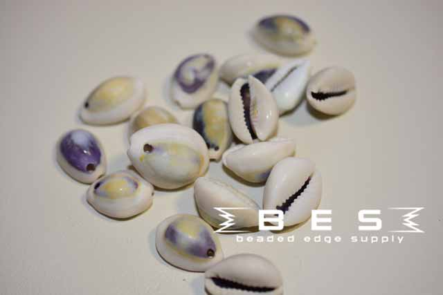 Cowrie Shell | 25 pc