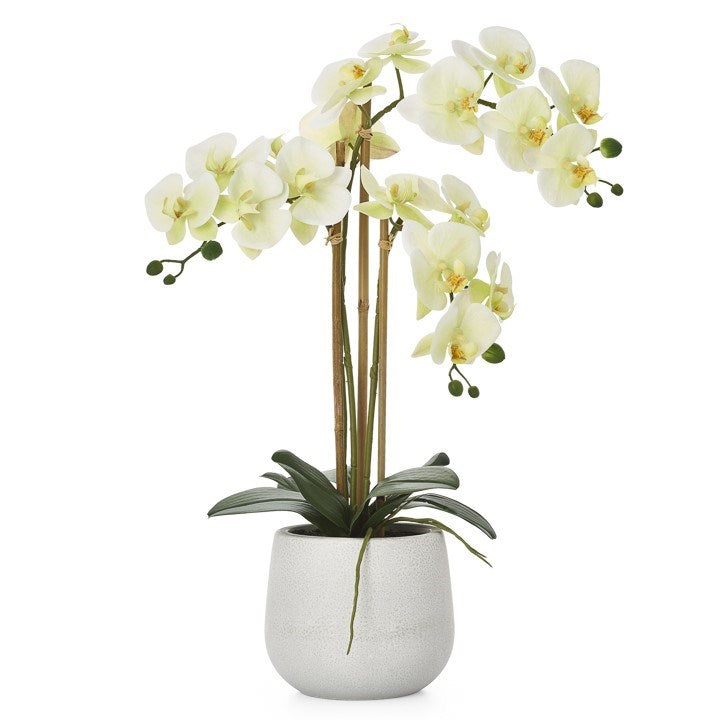 Faux Triple Stem Orchid -Yellow