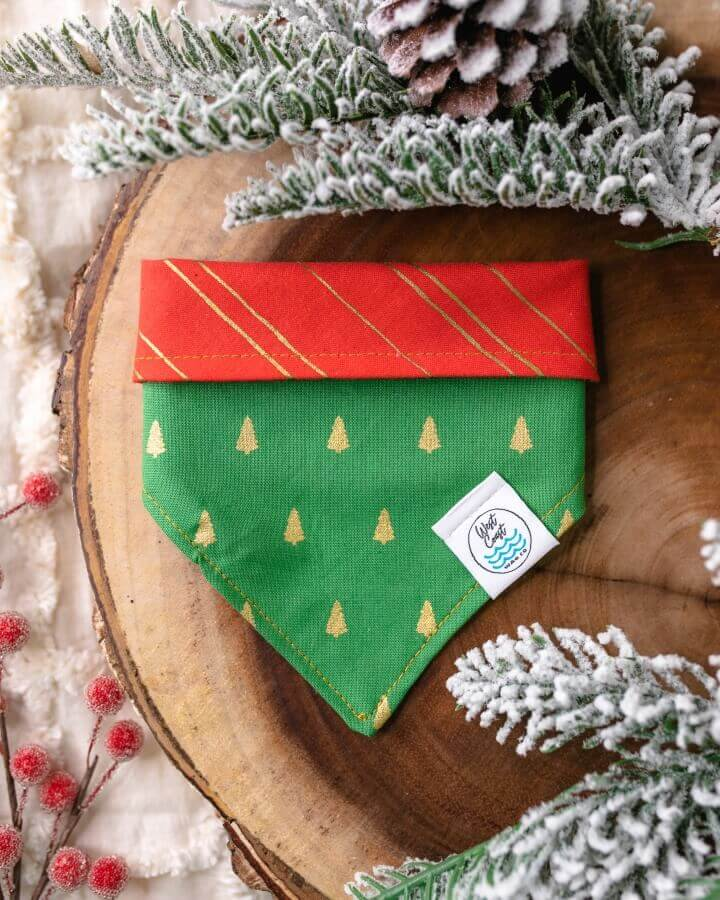 Green reversible dog bandana with gold trees on front and red with gold stripes on back