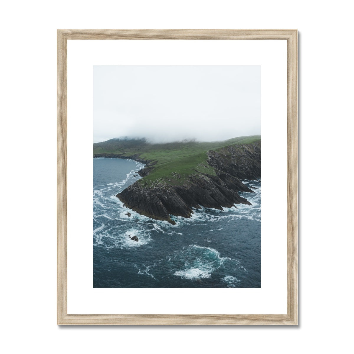 Bolus Head Framed & Mounted Print